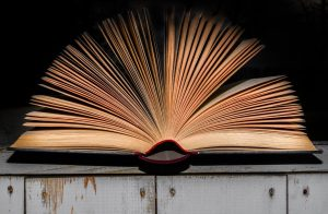 literature-book-open-pages-1005324-1